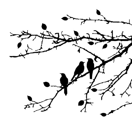 vector birds on the branches Illusztráció