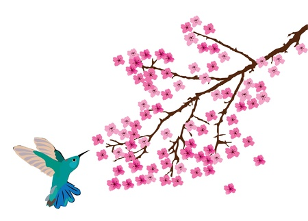 hummingbird Stock Illustratie