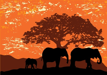elephants silhouettes Vector