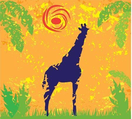 grunge giraffe Banco de Imagens - 12053229