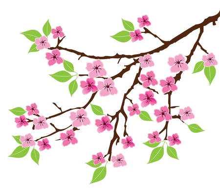 vector tree branch with leaves and flowers