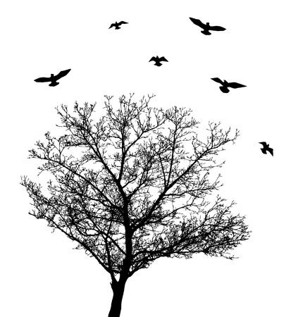 vector tree with birds 일러스트