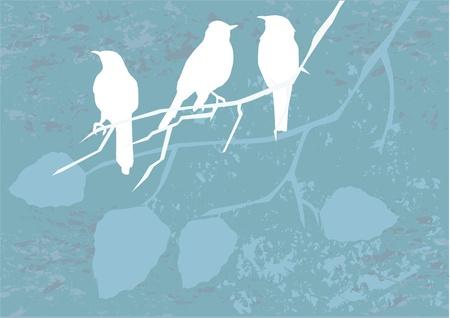vector birds silhouettes  イラスト・ベクター素材