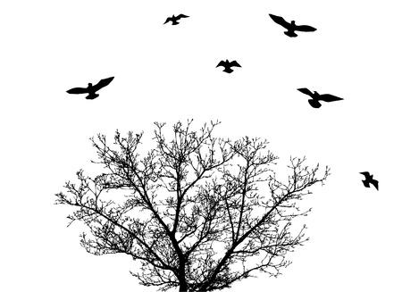 vector tree with birds Illusztráció