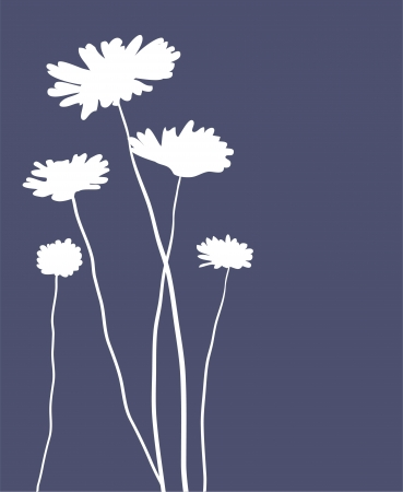 abstract flowers: camomiles Illustration