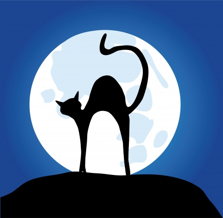 vector cat silhouette in the moon light Çizim