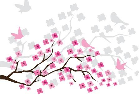 Cherry blossom illustration Vettoriali