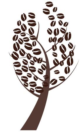 coffee beans: vector coffee tree