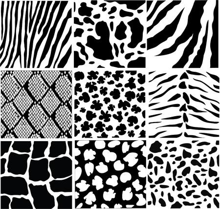 vector black and white skin Illustration
