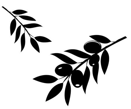 rama de olivo: vector silueta ramas de olivo Vectores