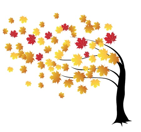 tree silhouettes: vector fall tree in the wind Illustration