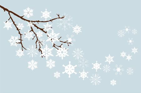 branch with snowflakes