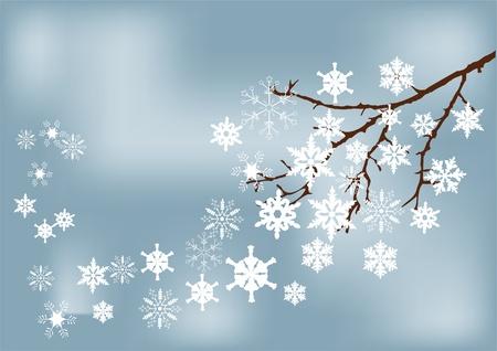 nakładki: gałąź śnieg Ilustracja