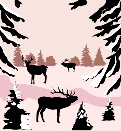 black and white forest: deer in the woods