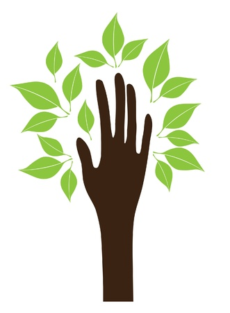 hand with green leaves Stock Vector - 16581983