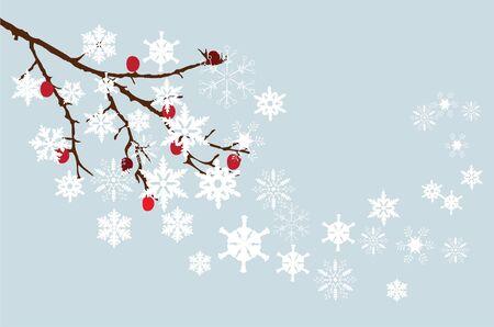 ramo di neve con le bacche Vettoriali