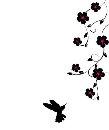 vector floral card with hummingbird Vector