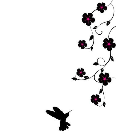 humming: vector floral card with hummingbird Illustration