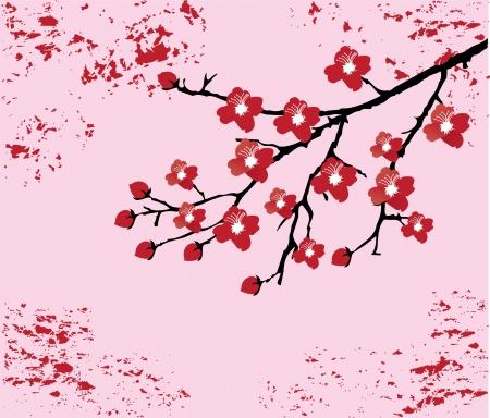 cherry branch: vector cherry blossom Illustration