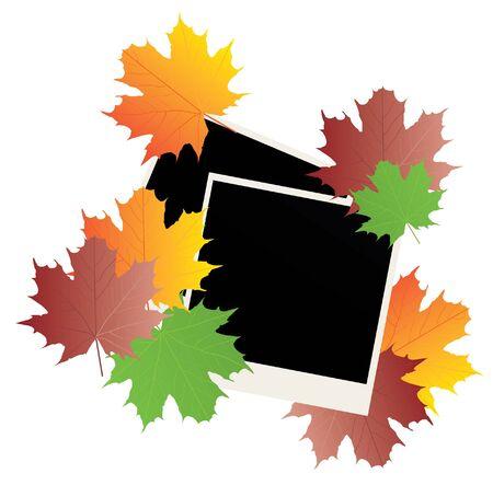 vector blank photos with fall leaves Vector