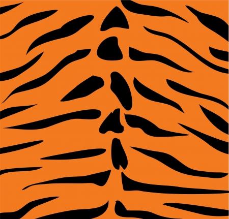 human skin texture: vector tiger skin
