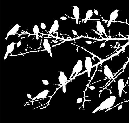bandada pajaros: las aves de vectores en las ramas