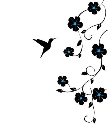 ハチドリとベクトル花カード