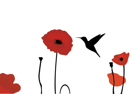 hummingbird and poppies Stock Illustratie