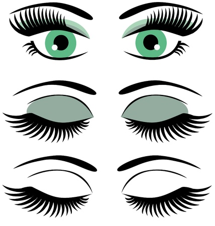 eyes with long lashes and make up Vettoriali