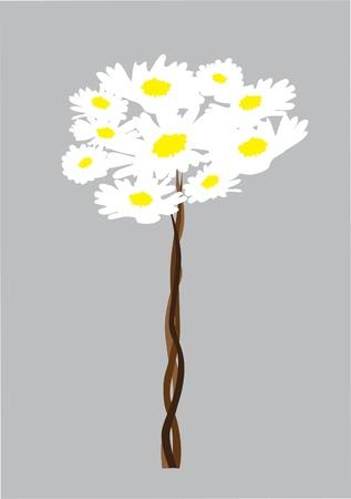 vector camomile tree