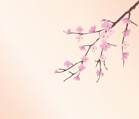 tree silhouettes: vector cherry blossom Illustration