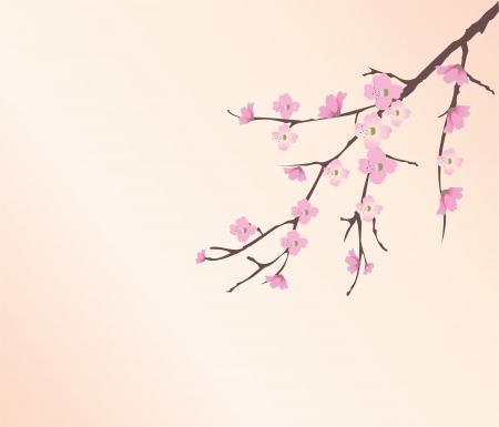flor de sakura: vector flor de cerezo