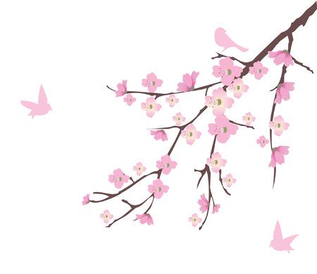 season: vector cherry blossom with birds