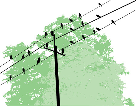threatened: vector birds on wire and tree background