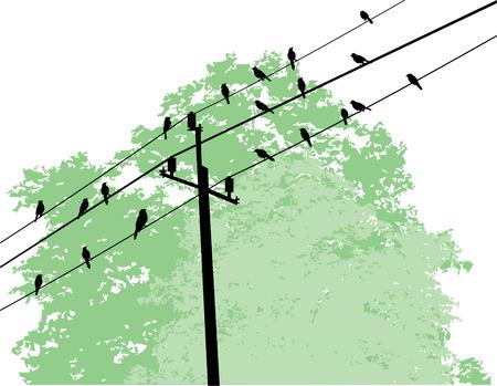 vector vogels op draad en boom achtergrond