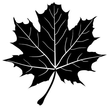ベクトルのカエデの葉のシルエット