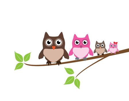 owl illustration: vector owl family
