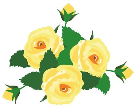 rose: vector yellow rose frame Illustration