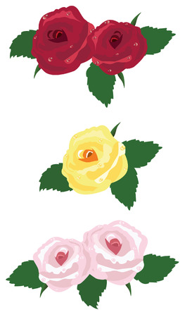 red pink: vector red, pink, yellow roses Illustration