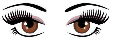vector brown eyes with long lashes Illustration