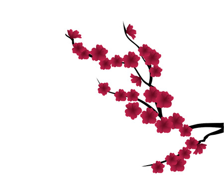 vector blossom branch with red flowers