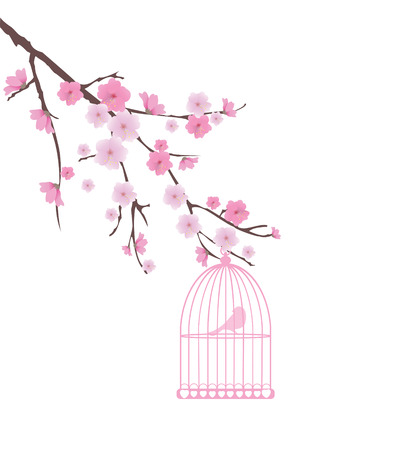 vector bird cage and cherry blossom