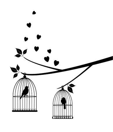 vector love birds in the cages