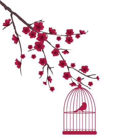 vector bird cage and blossom branch Vector