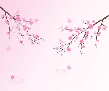 cherry blossom with birds and water circles Stock Vector - 28498947
