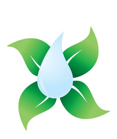 water ripple: vector water drop with green leaves Eco