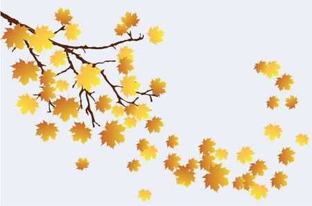 saturate: vector fall branch with leaves