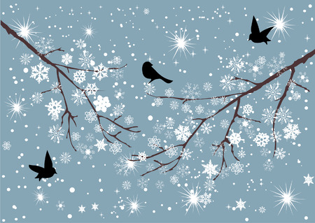 bare tree: vector snow branches with snowflakes and birds