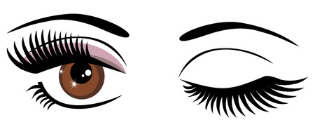 winking: vector illustration of brown eyes winking