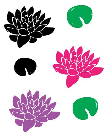 lirio acuatico: ilustración vectorial de flores de loto con hojas